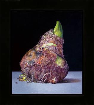 Amaryllis II | stilleven schilderij in olieverf van Adriana van Zoest koopt u nu online! ✓Hoogste kwaliteit ✓Veilig betalen ✓Gratis verzending