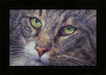 Ellens specht | stilleven schilderij in olieverf van Adriana van Zoest | Exclusieve kunst online te koop bij Galerie Wildevuur