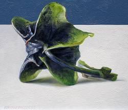 Zegekruid I   stilleven schilderij in olieverf van Adriana van Zoest   Exclusieve kunst online te koop bij Galerie Wildevuur