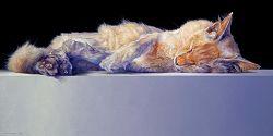 Mex | stilleven schilderij in olieverf van Adriana van Zoest | Exclusieve kunst online te koop bij Galerie Wildevuur