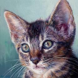Puma   stilleven schilderij in olieverf van Adriana van Zoest   Exclusieve kunst online te koop bij Galerie Wildevuur