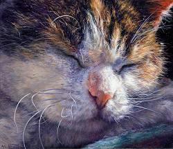 Strijpie | stilleven schilderij in olieverf van Adriana van Zoest | Exclusieve kunst online te koop bij Galerie Wildevuur