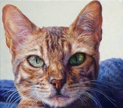 Lima   stilleven schilderij in olieverf van Adriana van Zoest   Exclusieve kunst online te koop bij Galerie Wildevuur