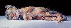 Pasgeboren kitten   stilleven schilderij in olieverf van Adriana van Zoest   Exclusieve kunst online te koop bij Galerie Wildevuur
