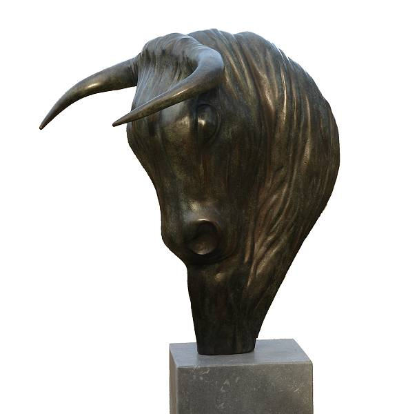 Bull Expression