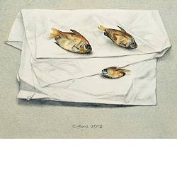 Three fishes | still-life painting in watercolor by Chris Herenius | Exclusive Dutch Master Art | View and buy the best artworks online now