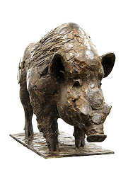 Wild boar | animal sculpture in bronze by Coba Koster now for sale online! ✓Highest quality & service ✓Safe payment ✓Free shipping