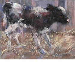 Standing calf | animal painting in pastel by Corry Kooy now for sale online! ✓Highest quality & service ✓Safe payment ✓Free shipping