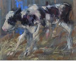 Calf | animal painting in pastel by Corry Kooy now for sale online! ✓Highest quality & service ✓Safe payment ✓Free shipping