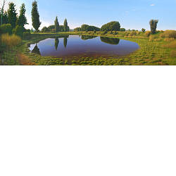 De Poel | landschap schilderij in olieverf van Hans Parlevliet koopt u nu online! ✓Hoogste kwaliteit & service ✓Veilig betalen ✓Gratis verzending