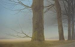 Tempelbosweg | schilderij van een landschap in olieverf van Johan Abeling | Exclusieve kunst online te koop in de webshop van Galerie Wildevuur