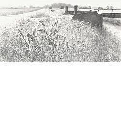 Tochtsloot | landschap tekening in potlood van Peter Durieux koopt u nu online!Hoogste kwaliteit & serviceVeilig betalenGratis verzending
