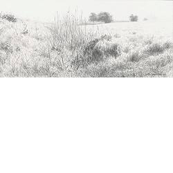 Pad naar le Coulet | landschap schilderij in acryl van Peter Durieux | Exclusieve kunst online te koop in de webshop van Galerie Wildevuur