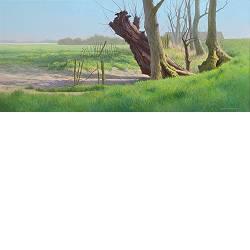 Splitsing | landschap schilderij in acryl van Peter Durieux | Exclusieve kunst online te koop in de webshop van Galerie Wildevuur