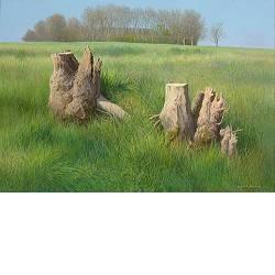 Laagwater | landschap schilderij in acryl van Peter Durieux | Exclusieve kunst online te koop in de webshop van Galerie Wildevuur