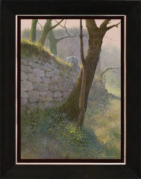 Langs de muur