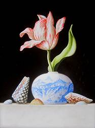 Chinese vase with Tulip and Shells | still-life painting in oil by Ruud Verkerk now for sale online! ✓Highest quality & service ✓Safe payment ✓Free shippi
