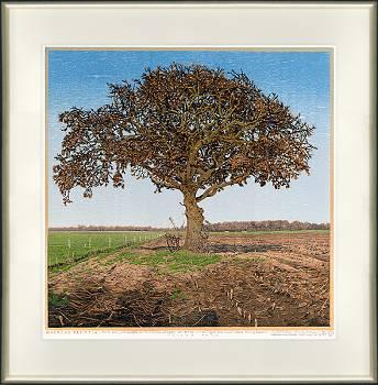 Quercus Drentia | landschap in houtsnede van Siemen Dijkstra koopt u nu online!Hoogste kwaliteit & serviceVeilig betalenGratis verzending