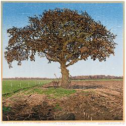 Quercus Drentia | landscape painting in woodcut by Siemen Dijkstra now for sale online!Highest quality & serviceSafe paymentFree shipping
