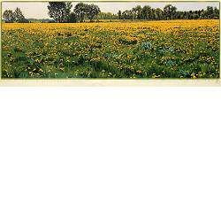 Dandelion field | landscape painting in woodcut by Siemen Dijkstra now for sale online! ✓Highest quality & service ✓Safe payment ✓Free shipping