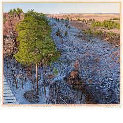 Fochteloërveen no. 2 | landscape painting in woodcut by Siemen Dijkstra now for sale online!Highest quality & serviceSafe paymentFree shipping
