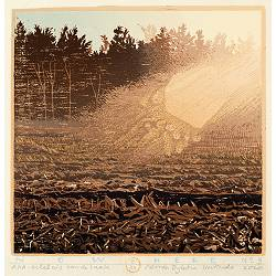 Now Here no 3 | landscape painting in woodcut by Siemen Dijkstra now for sale online!Highest quality & serviceSafe paymentFree shipping