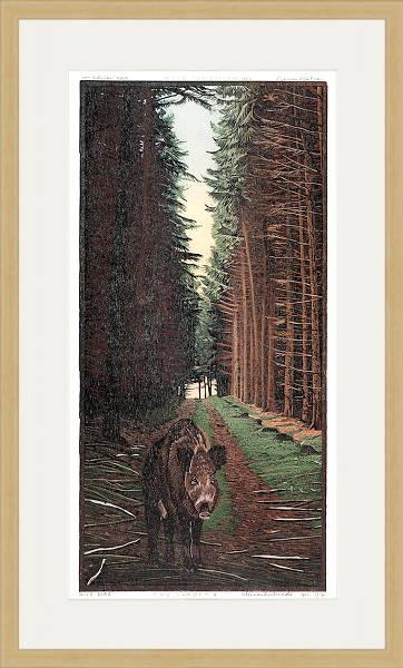 Wild Boar, Sus Scrova II