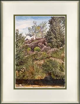 Rand van het Bargerveen | landschap in aquarel van Siemen Dijkstra koopt u nu online! ✓Hoogste kwaliteit ✓Veilig betalen ✓Gratis verzending
