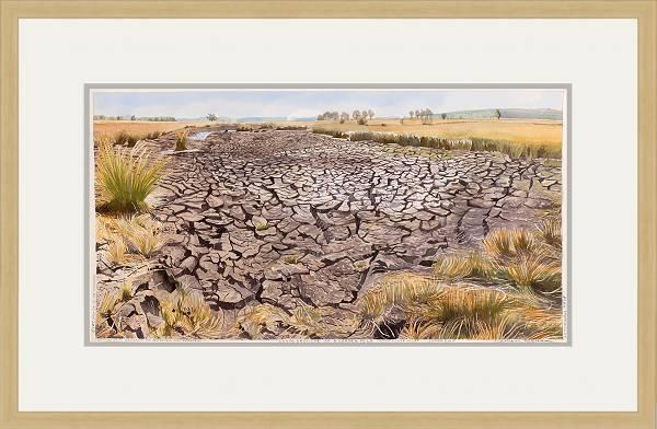 Grote droogte op Noorderveld