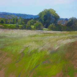 Hooivelden | schilderij van een landschap in pastel van Sophie Amauger | Exclusieve kunst online te koop in de webshop van Galerie Wildevuur