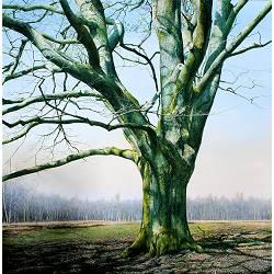 Behouden Tijd | bos landschap schilderij van Wout Wachtmeester koopt u nu online!Hoogste kwaliteit & serviceVeilig betalenGratis verzending